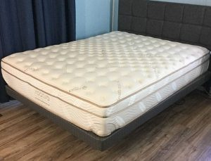 euro sealy online promo shop at top product toronto solomon free mattressville mattress sale now tight spring buy