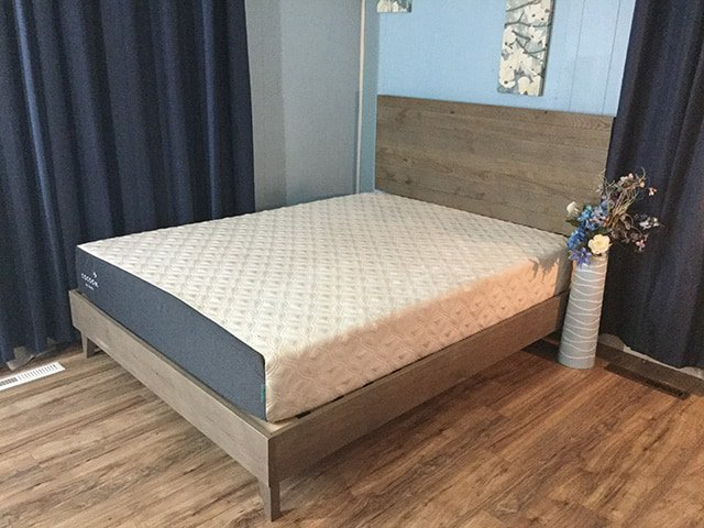 reviews sealy mattress review cocoon
