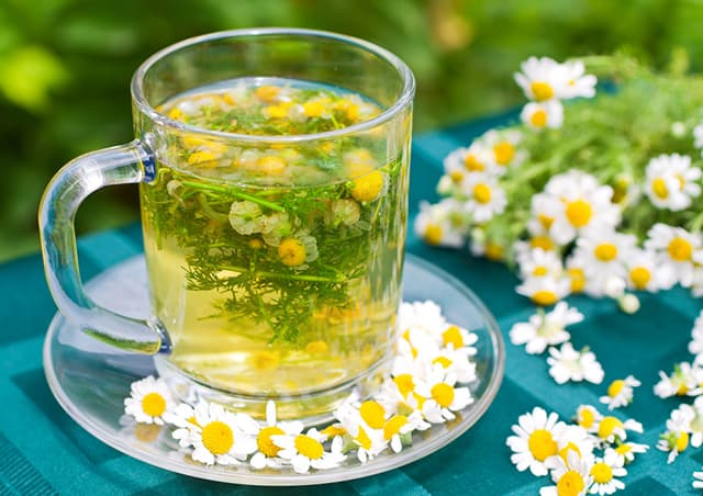 The Link Between Chamomile Tea Amp Sleep The Sleep Judge