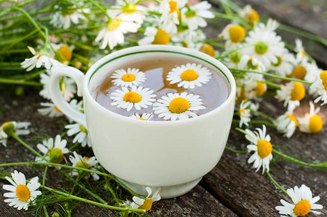 benefits of chamomile tea weight loss