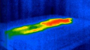 Picture of thermal heat imaging of a leesa mattress with the torso and head being hot