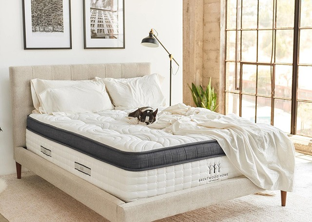 Brentwood Home Oceano Mattress Coupon