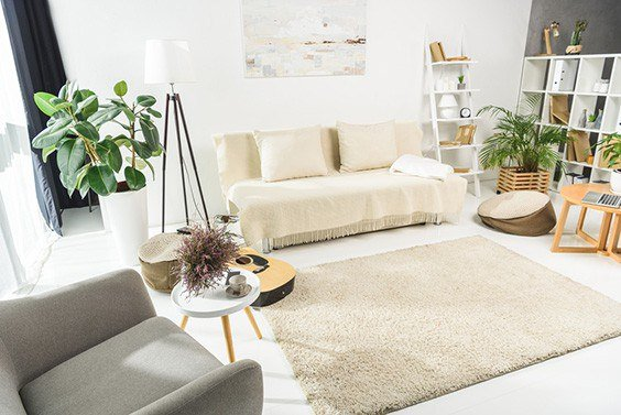 Best Sofa Beds For Everyday Use Reviews 2019