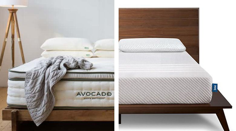 Which One Is Best Avocado Vs Leesa Mattress The Sleep Judge